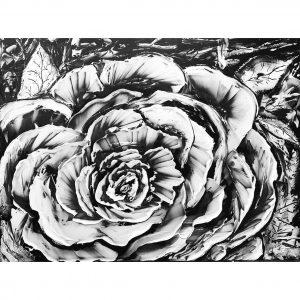 rosee-matinale_guillaume_gagnon_artiste_peintre_quebecois_web